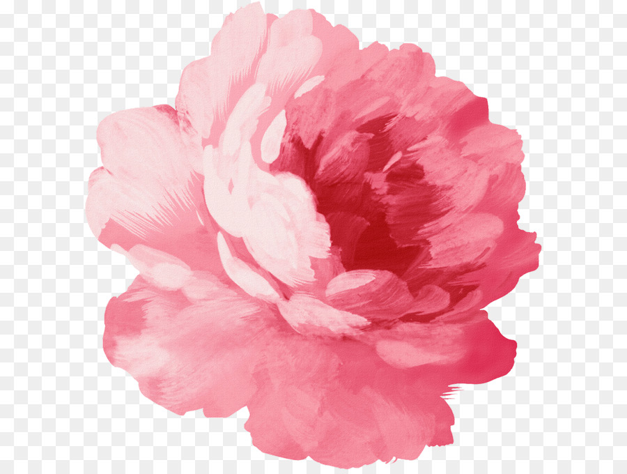 Pink flowers watercolor painting illustration drawing flower png pink flowers watercolor painting illustration drawing flower mightylinksfo