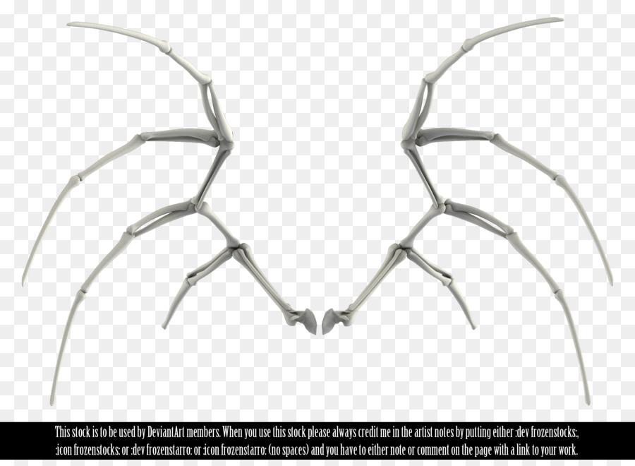 Iskelet Blog Resim Kemik Meleklerin Kanatları Png Indir 2500