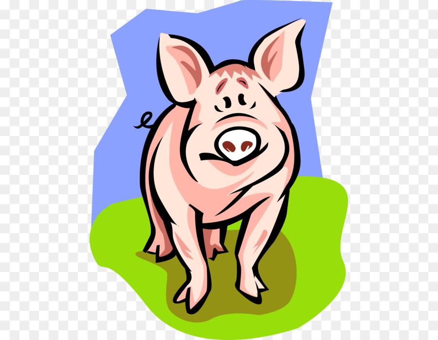 Cerdos domésticos del Feto de cerdo de la cría de Cerdos de la ...