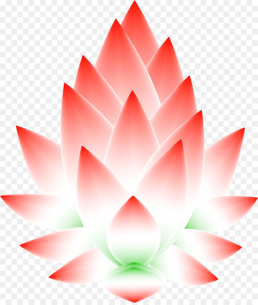 Sacred Lotus Flower Stockxchng Seed Petal Frame Lotus Png