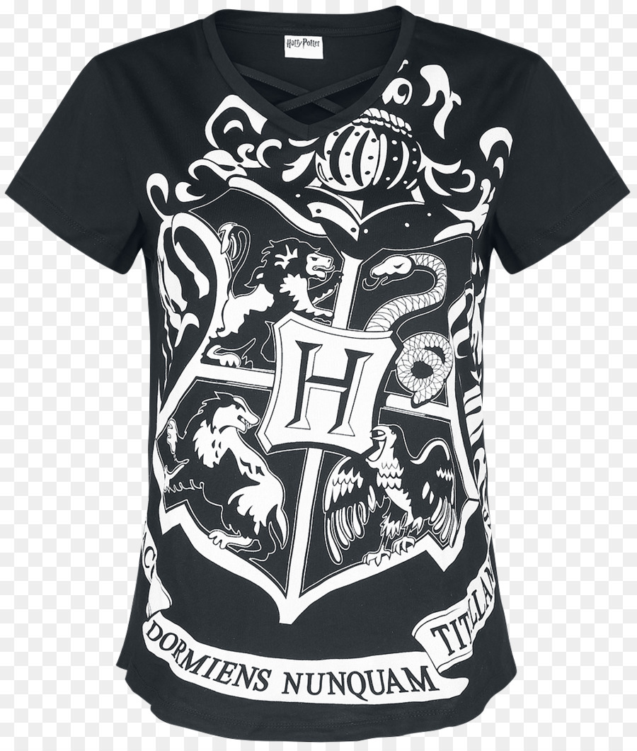 Harry Potter (Literary Series) T Shirt Hogwarts School Of Witchcraft And  Wizardry Gryffindor   Harry Potter