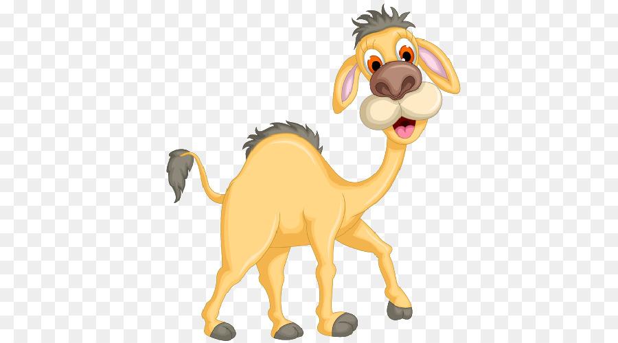 Lion Drawing png download - 500*500 - Free Transparent Camel