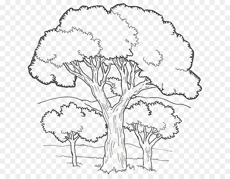 Libro para colorear, Páginas para Colorear de árboles Frutales Niño ...