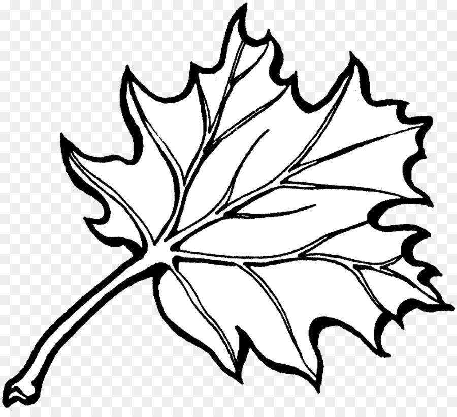 Libro para colorear de Otoño el color de la hoja - otoño png dibujo ...