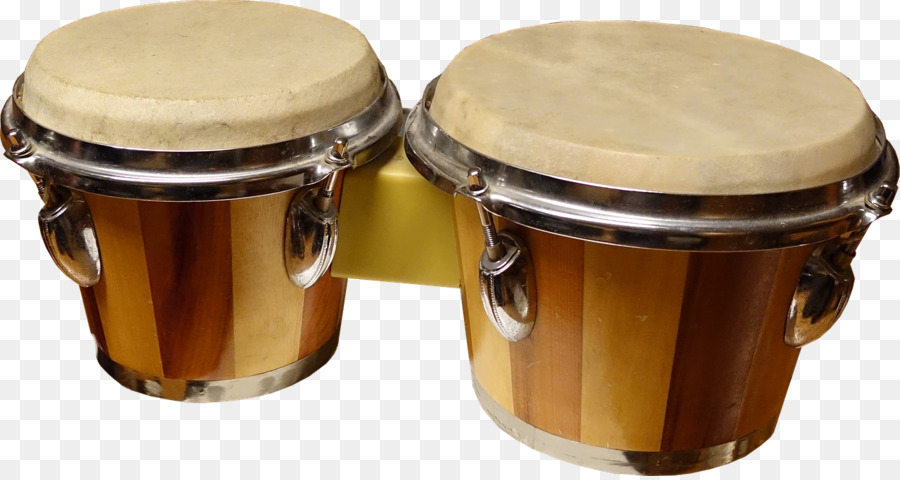 Congas World Percussion Steve Weiss Music