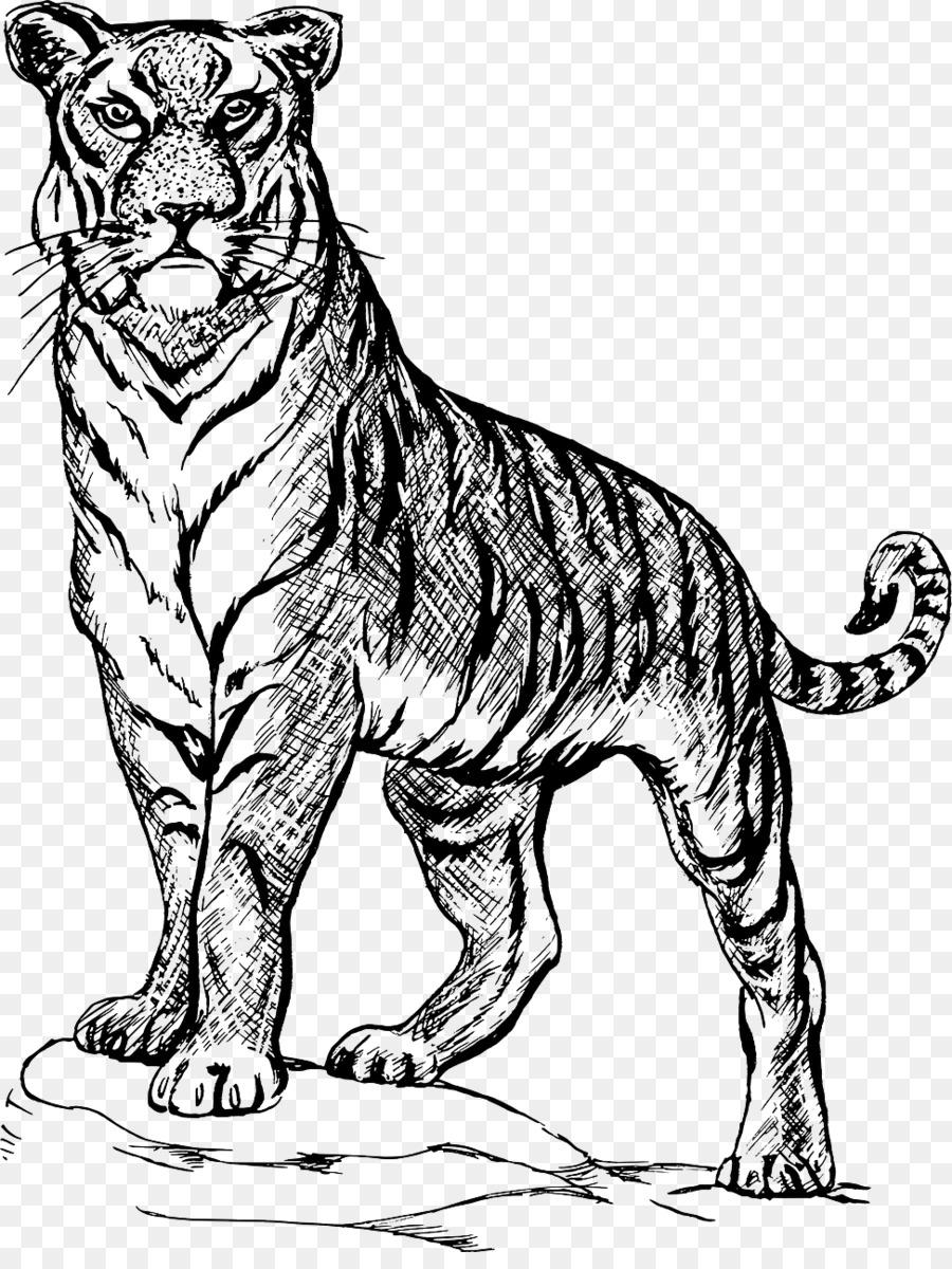Tiger Sketch Drawing Line Art Image Tiger Png Download 9731280