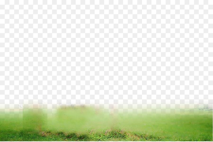 picsart photo studio editing lawn daytime desktop wallpaper cb