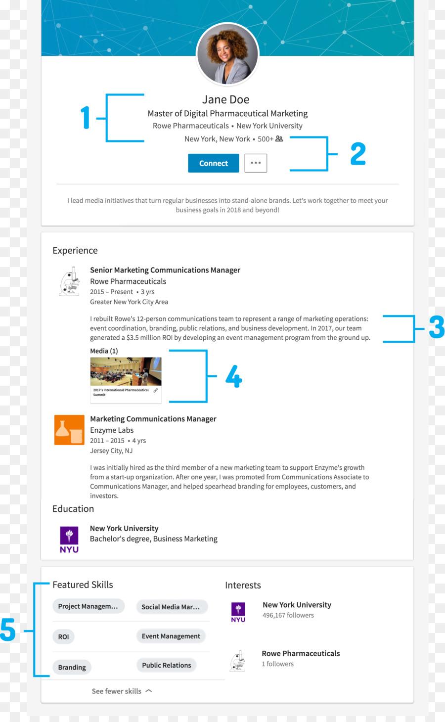 LinkedIn Résumé User profile Job hunting Template - Experienced ...