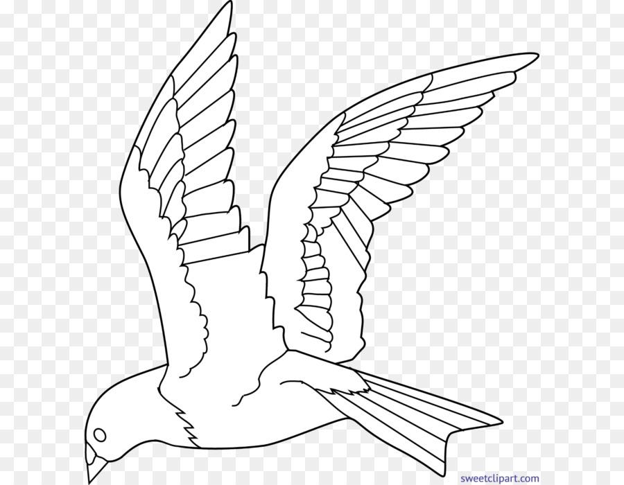 Vogel-Malvorlagen Malbuch Flug Zeichnen - Vogel png herunterladen ...