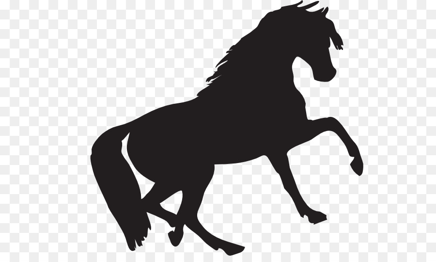 Shelby Mustang Ford Mach 1 Horse Black Png