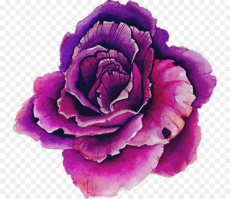 Flower Png Download 799 779 Free Transparent Sticker