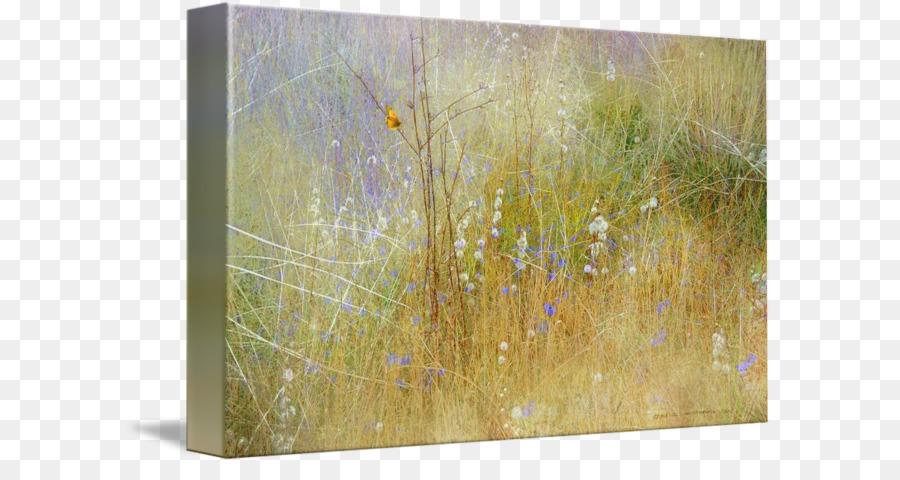 Kanvas Lukisan Print Art Lukisan Unduh Lukisan Rumput