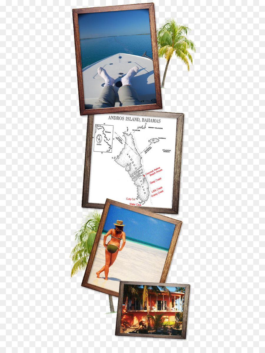South Andros Fishing Rods Picture Frames Beach - breezes resort ...