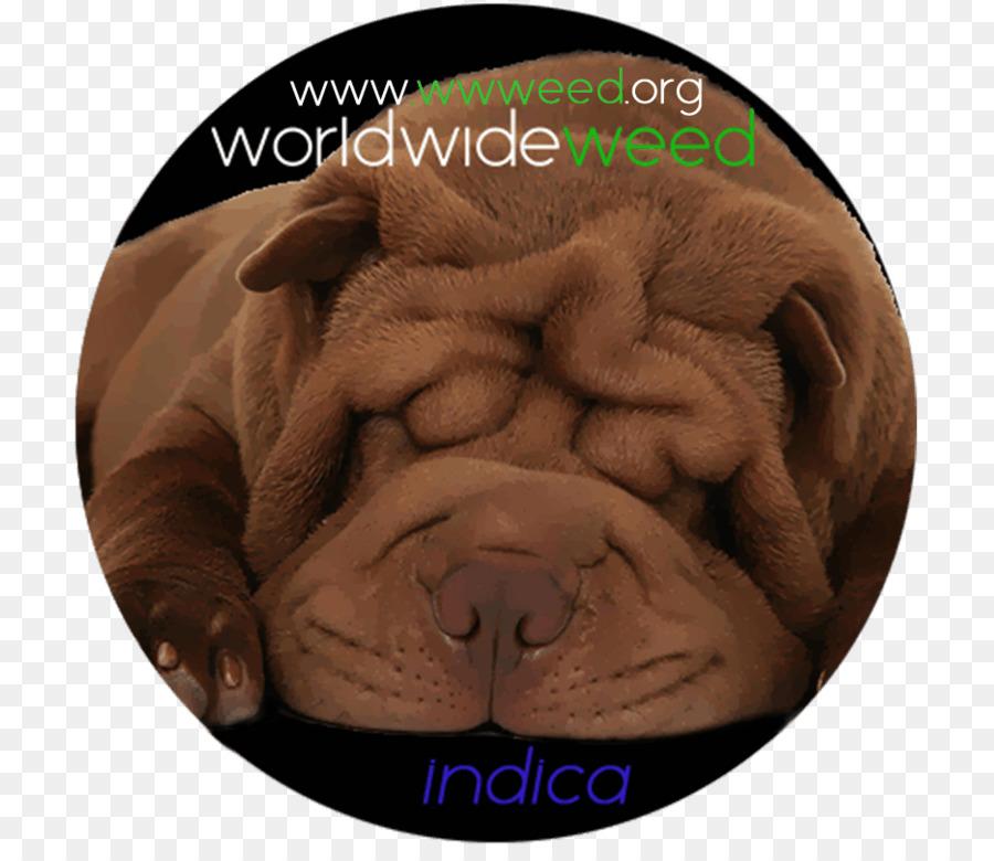Dogs Cartoon png download - 770*770 - Free Transparent Shar