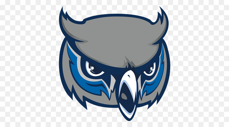 Olathe West High School Kennesaw State Owls Football College