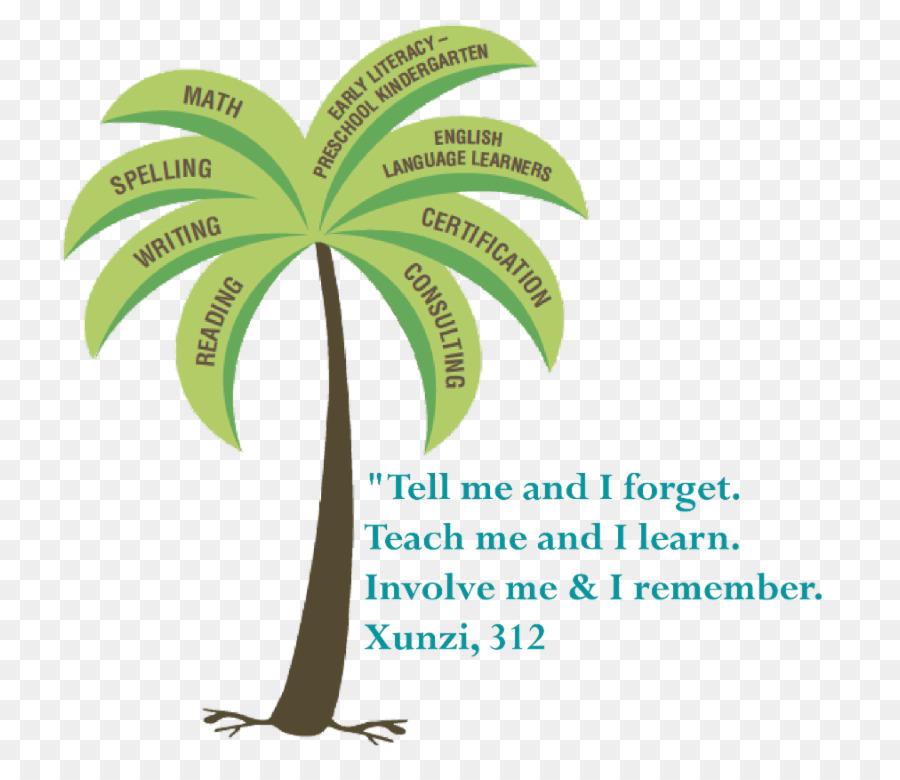 Orton Gillingham Palm Trees Brand Font Training Reading Test