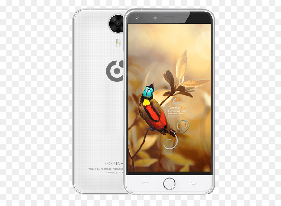 Harga Handphone Samsung Galaxy Png Download 643 653 Free