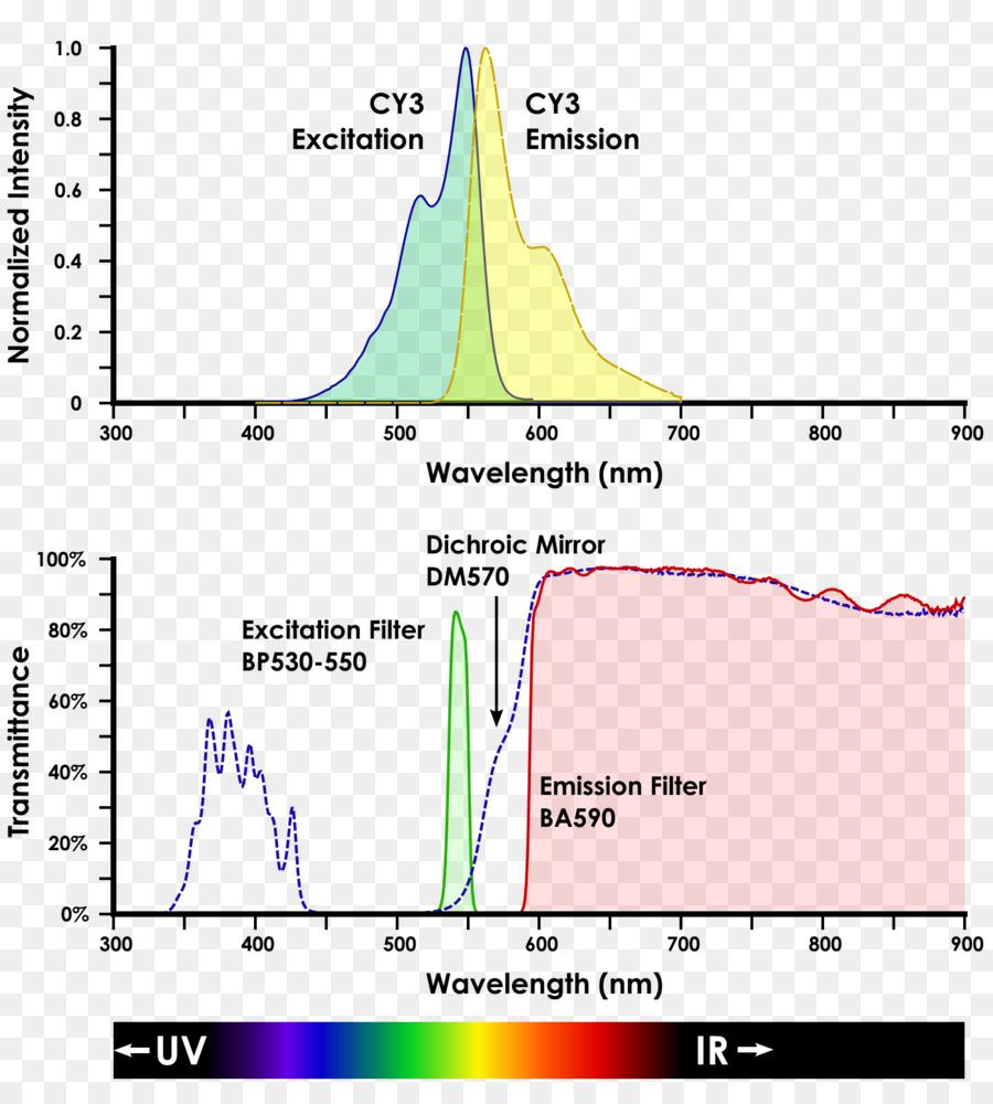 Línea De Ángulo De Diagrama De Cianina - papa celular ampliación de ...
