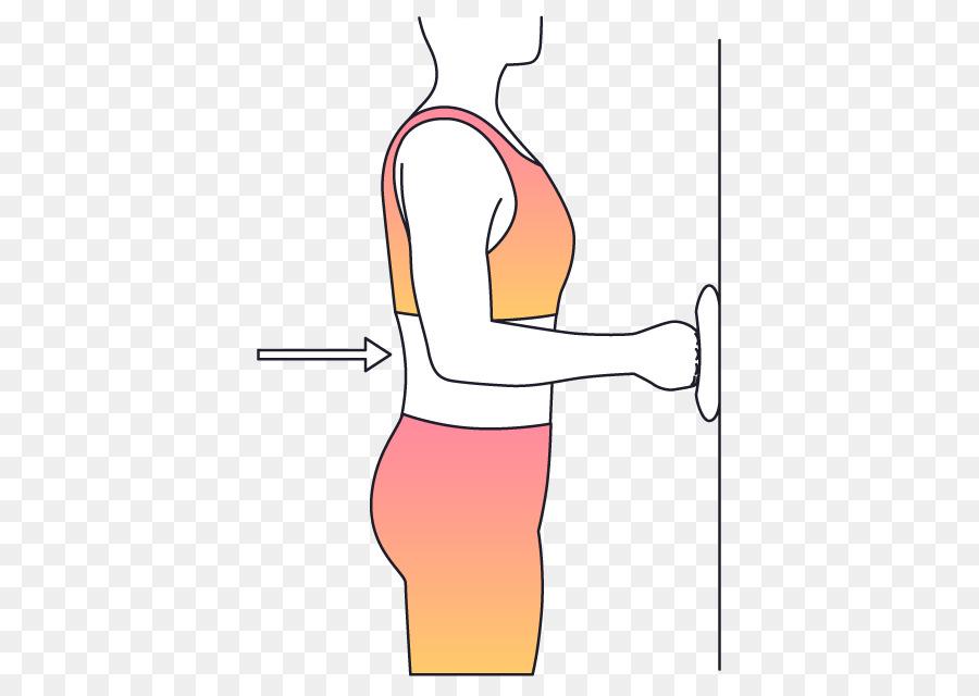 Daumen Isometrische übung Schulter Muskel - Handtuch Schulter png ...