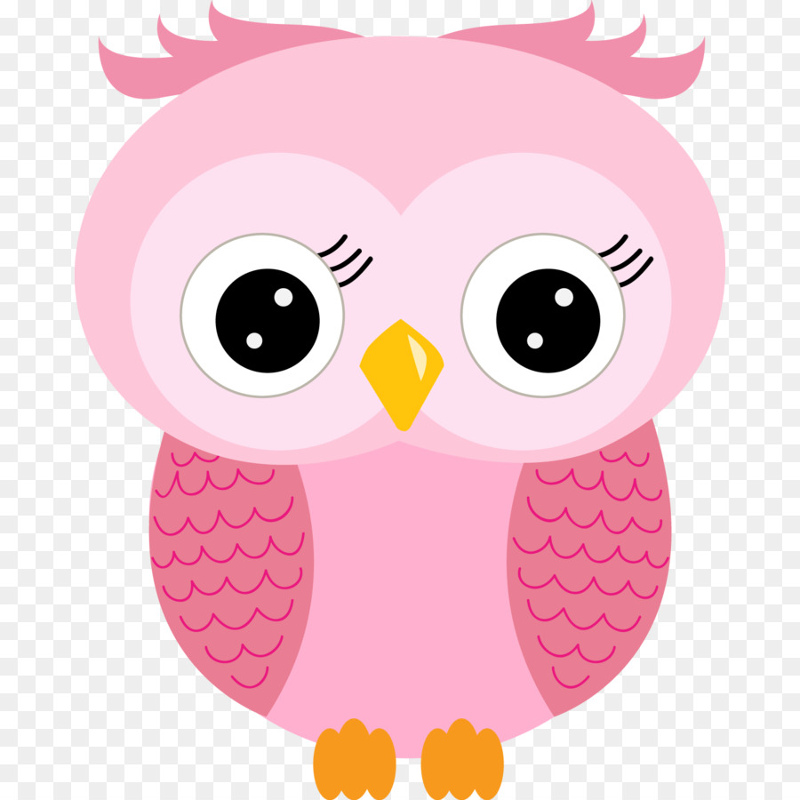 Little Owl Clip Art Image Barn Owls Baby Owl Crochet Pattern Png