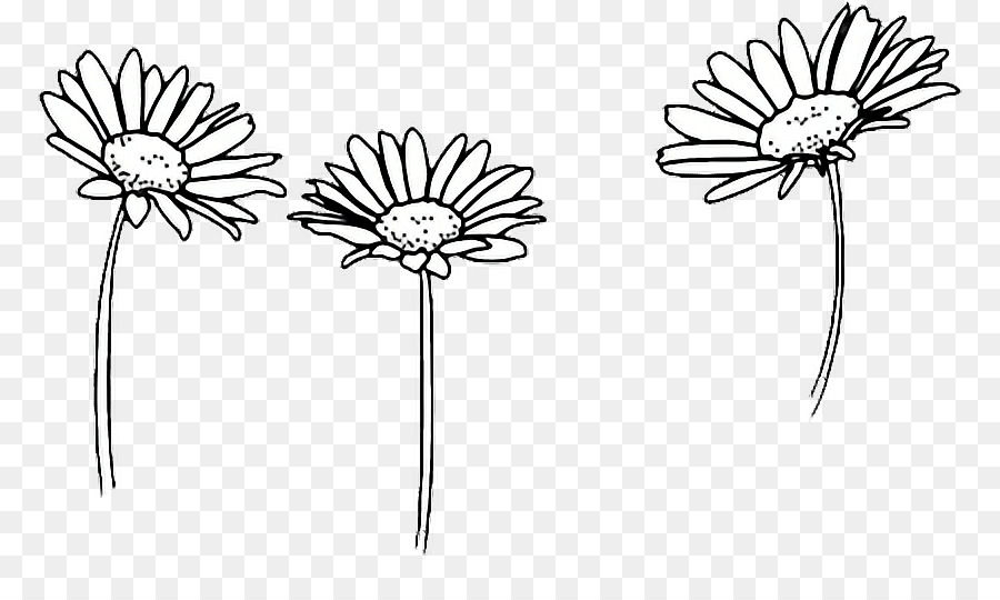 Clip Art Drawing Flower Image Floral Design Sunflowers Tumblr 2560