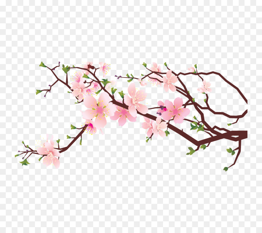 Cherry Blossom Tree Drawing png download - 800*800 - Free