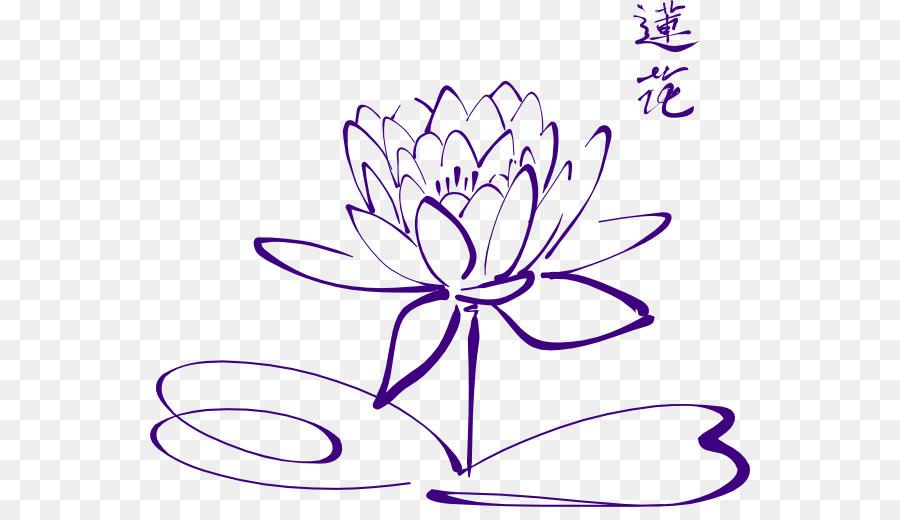 Drawing Sacred Lotus Line Art Image Clip Art Purple Lotus Png