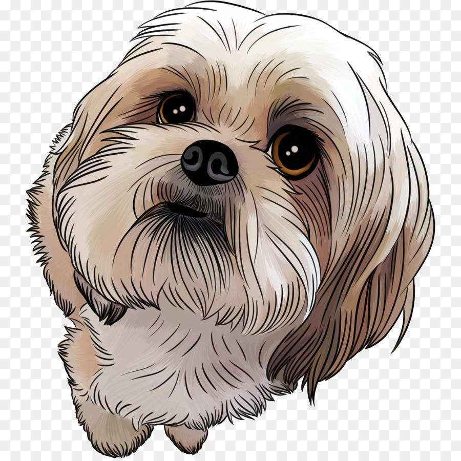 Shih Tzu Puppy Maltese Dog Poodle Pekingese Puppy Png Download