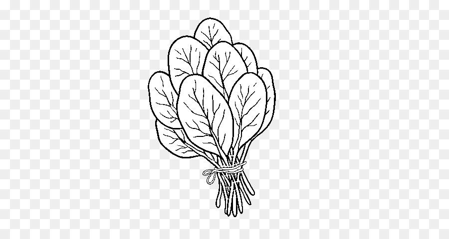 Ispanak Salatası Küçük Resim Boyama Kitabı çizim Sebze Png Indir