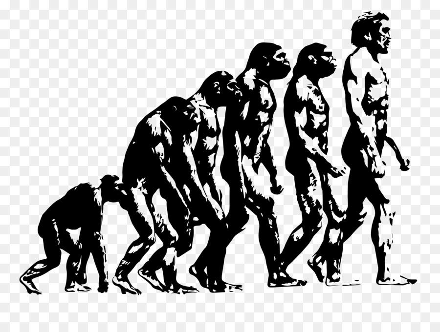картинка про эволюцию человека объединяет молодых старых