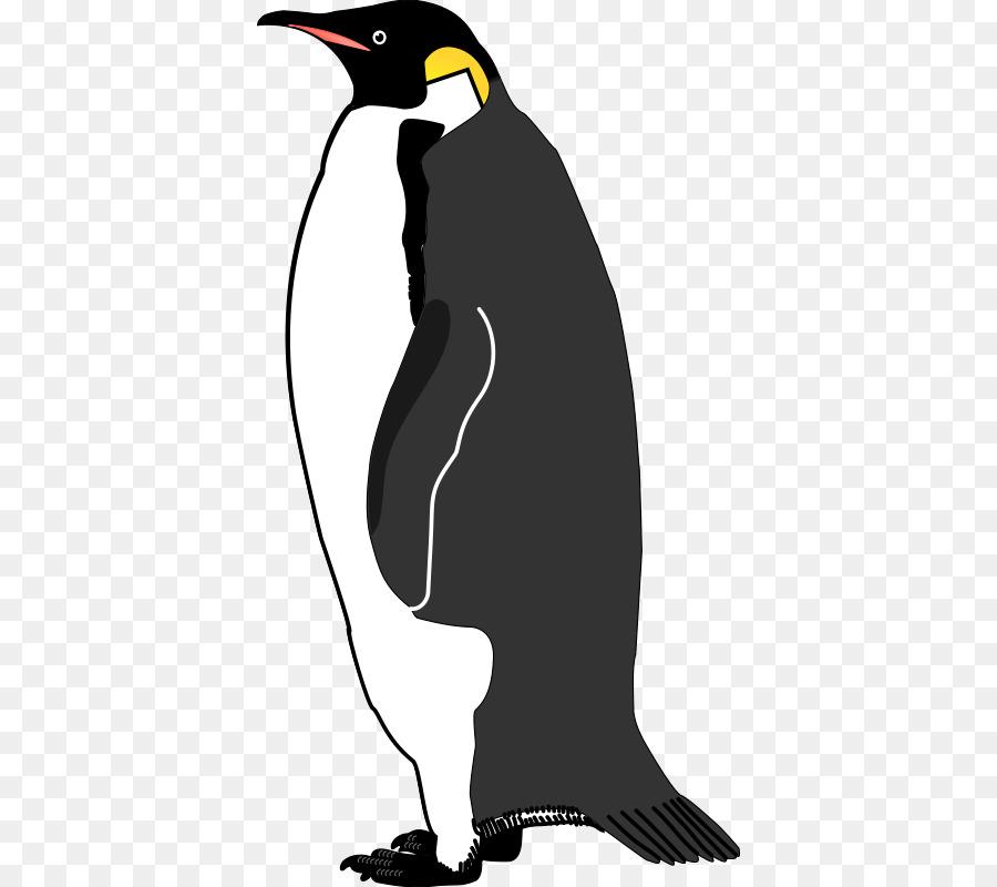 Emperor penguin Bird Vector graphics Image - lovebirds png download
