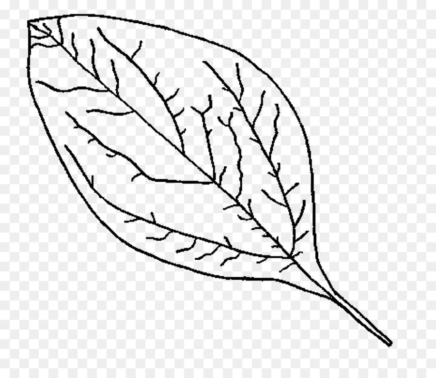 Libro para colorear de El Bosque Encantado Hoja de Otoño - otoño png ...