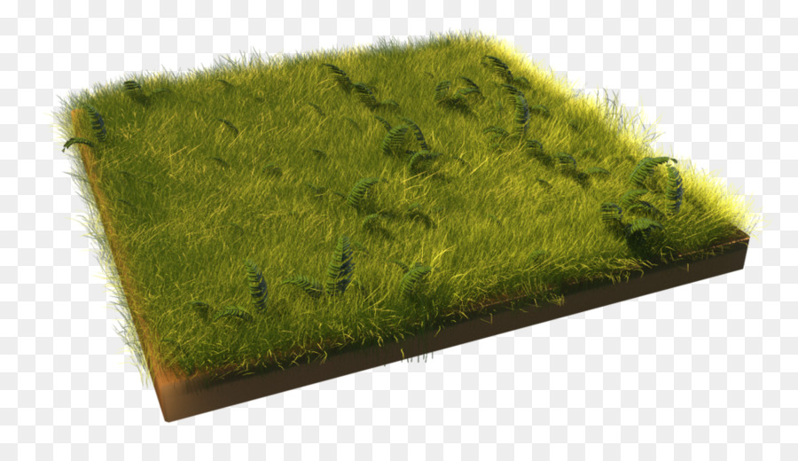Green Grass Background png download - 1000*563 - Free