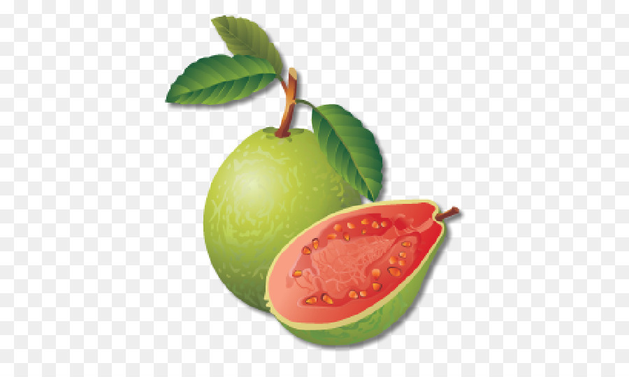 Guava Images Free Download