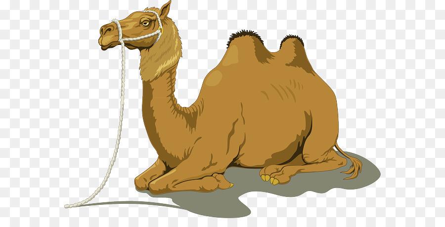Giraffe Cartoon png download - 640*442 - Free Transparent