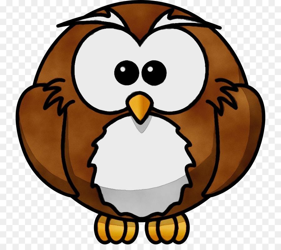 Owl Vector Graphics Cartoon Clip Art Drawing Png Download 800