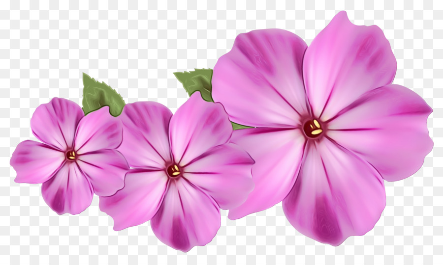 Purple Watercolor Flower png download - 1600*940 - Free Transparent